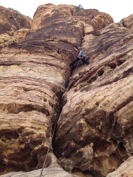 Tracy on p3 of Hearing Voices 5.7+