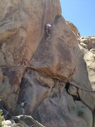 Rock Climbing Photo: FA Alpha Omega Pride (5.9) - Kelly Vaught