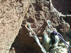 Rock Climbing Photo: P3 anchor with fat Metolius rap hangers.