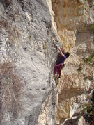 "Rock Climbing Photo: Chris P. ""Tator Tot"" navigates through t..."