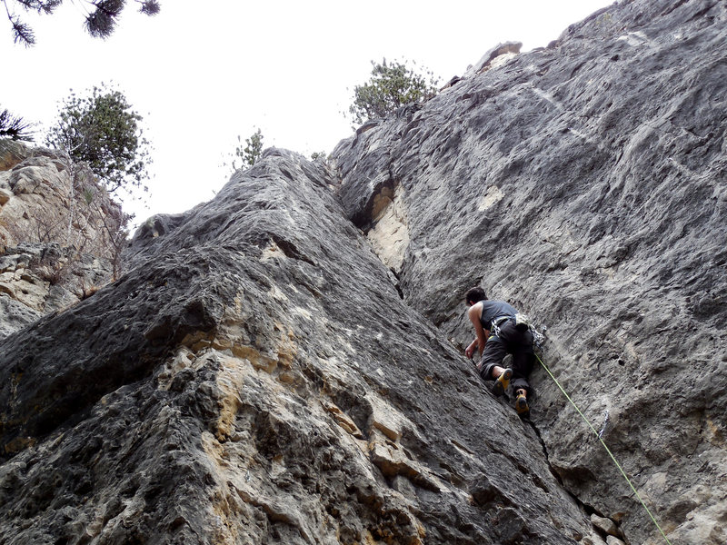 Rock Climbing Photo: R Frost All Strung Out on Crack
