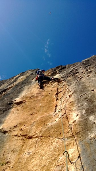 Rock Climbing Photo: Alex shaking out just after the long reach left on...