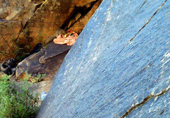 Rock Climbing Photo: The Original Route Ringtail