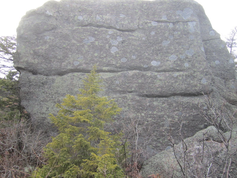 Slabby face of the main boulder