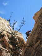 Rock Climbing Photo: John.