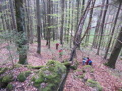 Rock Climbing Photo: This is what the trail up to the road looks like. ...