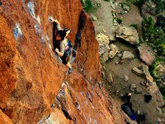 Rock Climbing Photo: Shayna Brown on JT's Route
