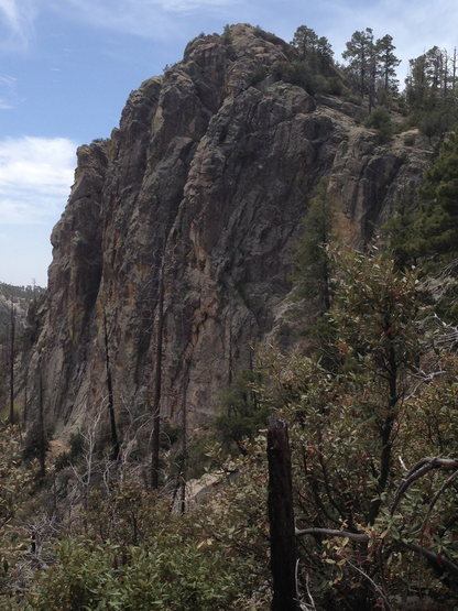 From the T-section of trail... To Ridgeline or to Boneyard? Where will we go?