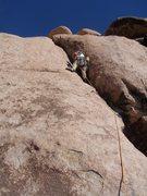 Rock Climbing Photo: YIP