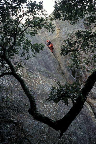 Rock Climbing Photo: Liza Butler on Chouinard's Crack, at Mt. Diablo St...