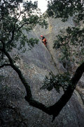 Rock Climbing Photo: Liza Butler on Chouinard's Crack, at Mt. Diablo St...