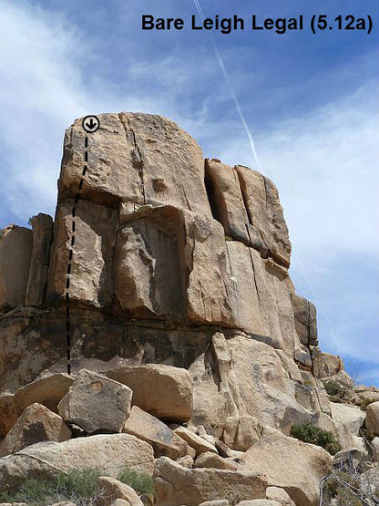 Rock Climbing Photo: Bare Leigh Legal (5.12a), Joshua Tree NP