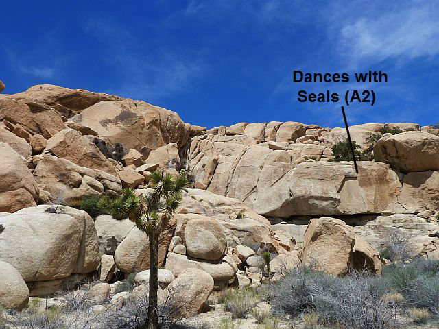 Dances with Seals (A2), Joshua Tree NP
