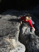 Rock Climbing Photo: Sow Sow Sow