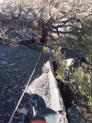Rock Climbing Photo: Looking down into Swan Slab Chimney from the crux ...