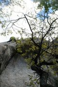 Rock Climbing Photo: Das craigers in the tenuous double cracks