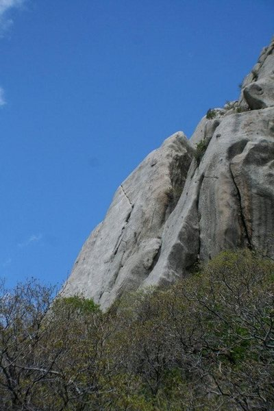 Rock Climbing Photo: Mexican crack LCC