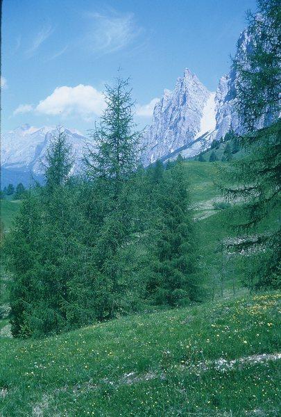 Campanile Dimai and Forcella Pomagagnon (the big scree gully).