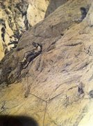 Rock Climbing Photo: This was taken in 1984 way above the Voices Wall. ...