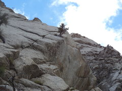 Rock Climbing Photo: A view from the base. Have your small gear ready t...