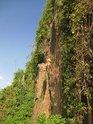 Rock Climbing Photo: Notice the pillar to the left of the wall. Climber...