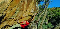 Rock Climbing Photo: Hitting the first move to the perfectly textured j...