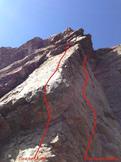 Rock Climbing Photo: Photo from Base, Shows proximity to Chambered Naut...