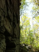 Rock Climbing Photo: The overhanging face