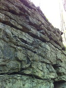 Rock Climbing Photo: Did not climb the left side , due to giant nest of...
