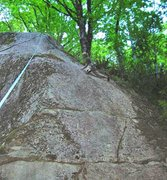 Rock Climbing Photo: Climber toproping Weed-be-gone (10b). The upper pa...