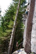 Rock Climbing Photo: Climber: Dave Morrison