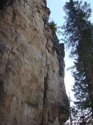 Rock Climbing Photo: The Dawg Pound contains 3 stout routes ranging fro...