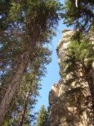Rock Climbing Photo: Joel projects The Slim Shady Pillar.