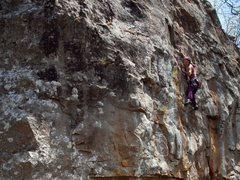 Rock Climbing Photo: Marci high on Purple Nehi