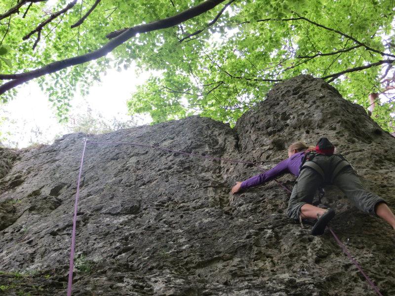 Rock Climbing Photo: Fanny grumpily following Waggerla. ;)