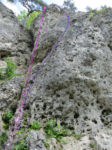 Rock Climbing Photo: Bauchtanz in pink and Daniel in purple. Also visib...