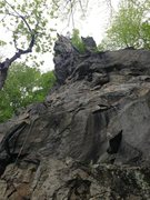 Rock Climbing Photo: Dolt from Sunday May 12 2013. One of the last pict...