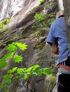 Rock Climbing Photo: Below Lissen (5.8), as seen from the bottom. The s...
