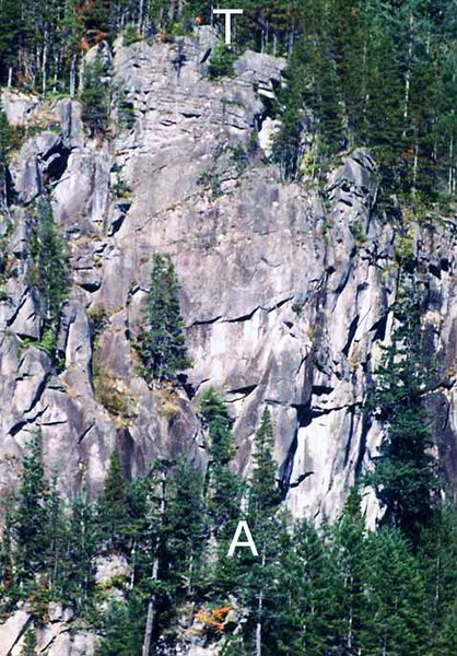 "Upper left side of Blues Cliff. ""T"" is the top of Starfish (5.9). ""A"" is the base of Accidental Discharge (11a). (From RCNW.net)"
