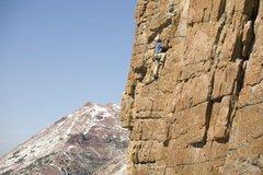 Rock Climbing Photo: Jersey on Run to the Hills.