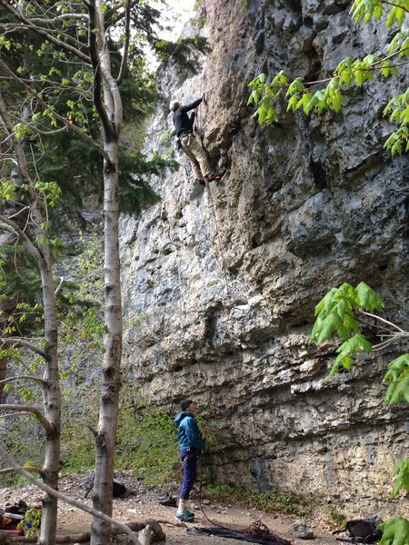 Rock Climbing Photo: Photo of Belay area and route