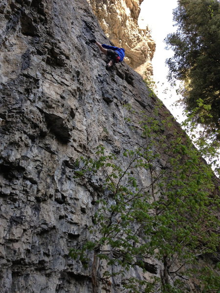 Photo Shows Climber at Crux of Primal Magic
