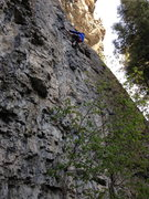 Rock Climbing Photo: Photo Shows Climber at Crux of Primal Magic