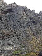 Rock Climbing Photo: Platinum Blond 2013 Photo