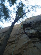 Rock Climbing Photo: Lacey Lou above the 'crux'