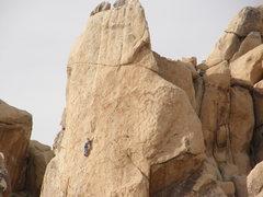 Rock Climbing Photo: I Saw.....