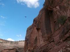 Rock Climbing Photo: need i say more