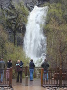 Rock Climbing Photo: Bridalveil Falls after an early spring deluge of t...