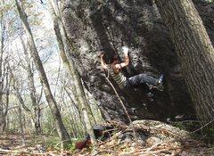 "Rock Climbing Photo: Aaron on the FA of ""Orb Weaver"""
