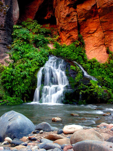 Rock Climbing Photo: Beautiful springs up the Narrows.